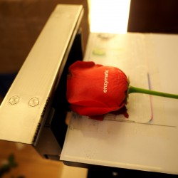 Rose Flower Printer
